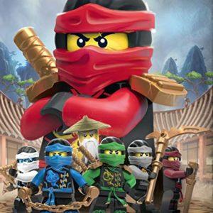 Character World–Juego de Ropa de Cama Reversible Lego Ninjago, 135x 200cm + 80x 80cm, linón 1475algodón, 100% Algodón Linon, Ninjago Red, 135 x 200 cm